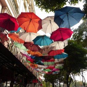 Vietnam | JN Touristik | Ihr Reisebüro in Strausberg